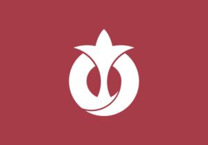 Bandeira da província de Aichi