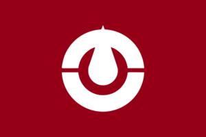 Bandeira da província de Kochi